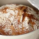No knead for speed – eltefritt brød