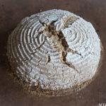 Eltefritt brød med steel cut havre