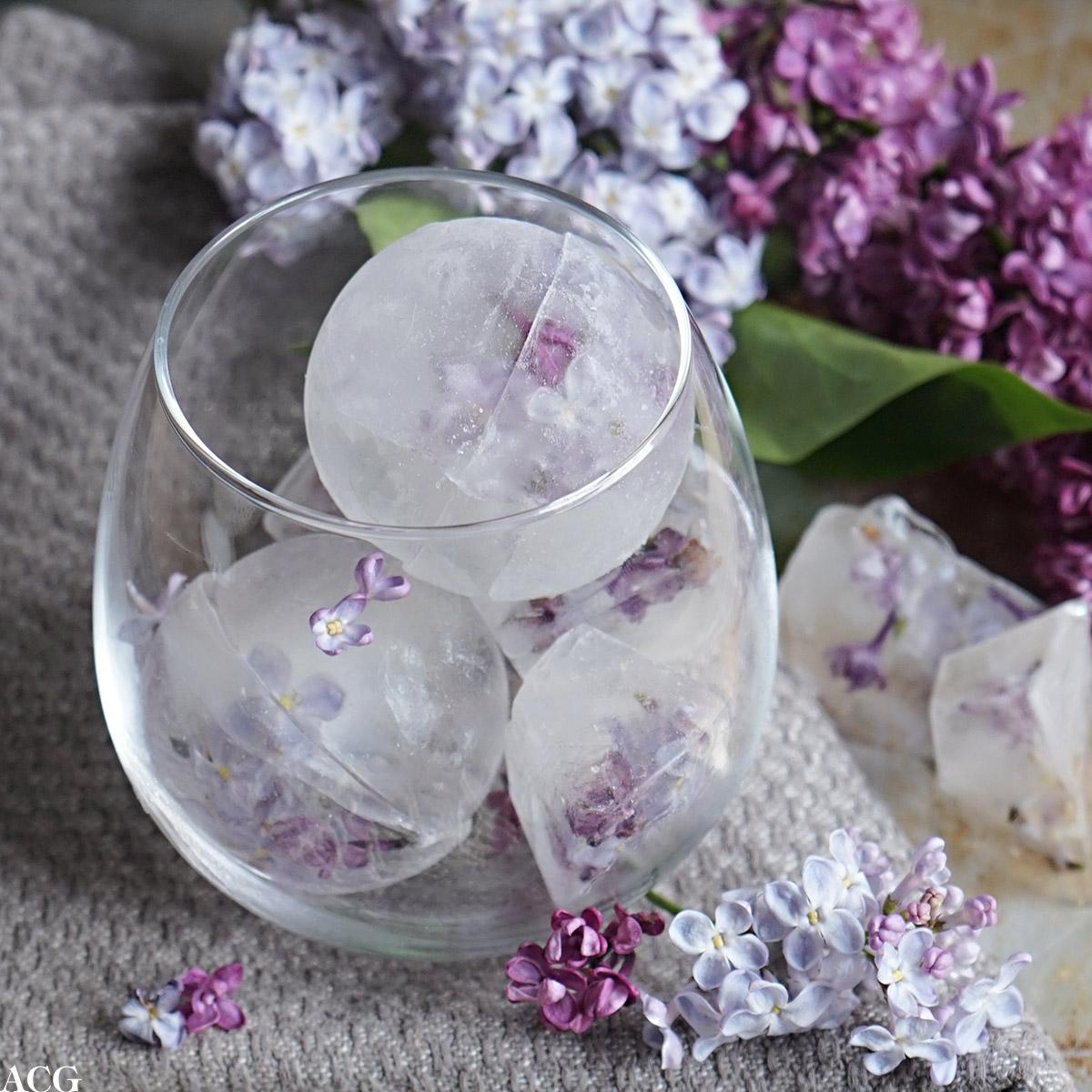 Sommerlige isbiter med blomster